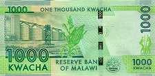 Малави: 1000 квачей 2014-16 г.